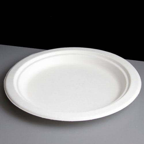 25cm 10 Quot Extra Large White Biodegradable Bagasse Plate