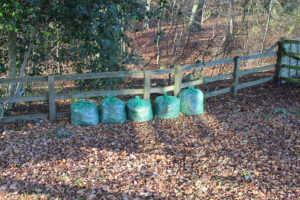 Five bags leaves green sacks