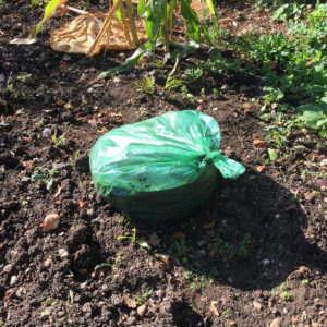 Garden leaf mulch