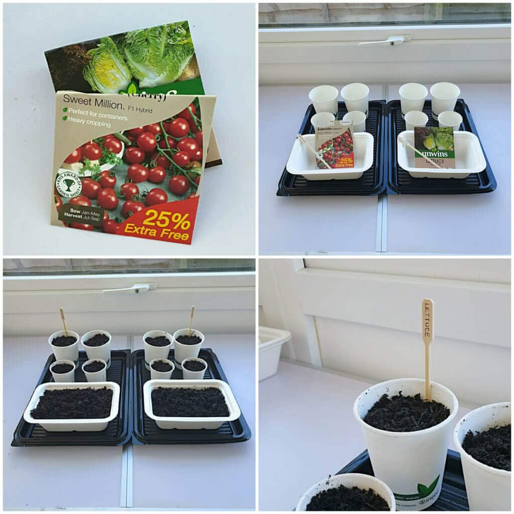 Home Grown Seeds in Compostable Food Packaging