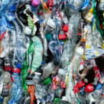 Squashed Bottles for Recyling
